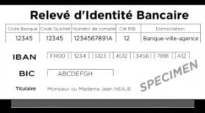 EST- CE DANGEREUX DE DONNER SON R.I.B ??