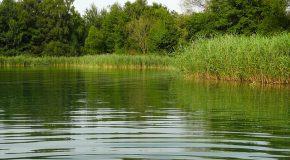 Assises de l'eau Sobriété et restauration des milieux doivent être au cœur de la stratégie gouvernementale