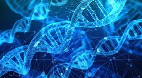 Nanoparticules Un appel à plus de prudence
