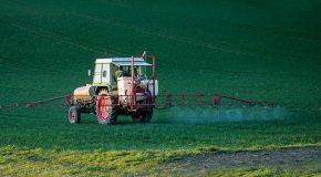 Pesticides et santé La liste des maladies qu'ils provoquent s'allonge